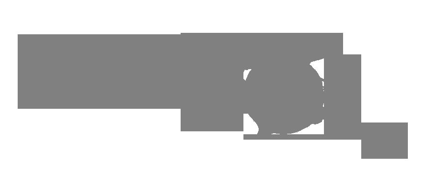 Lupen icon