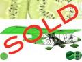 Kiwi_sold