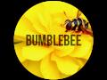 Edition Bumblebee