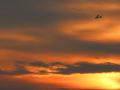 Fliegen-in-den-Sonnenuntergang